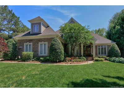 Ballantyne, Ballantyne Country Club, Ballantyne Meadows Single Family Home For Sale: 14620 Brick Church Court