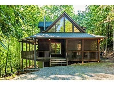 Lake Lure, Mill Spring Single Family Home For Sale: 770 Lake Adger Parkway #25