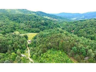 Weaverville Residential Lots & Land For Sale: 99999 Mundy Cove Road