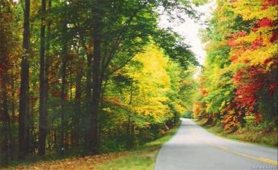 Asheville NC Residential Lots & Land For Sale: $2,950,000