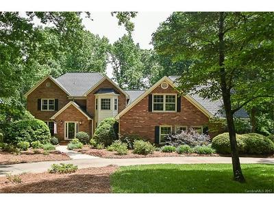 Mint Hill Single Family Home For Sale: 8725 Scarsdale Drive