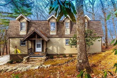 Transylvania County Single Family Home For Sale: 16 Costigan Road
