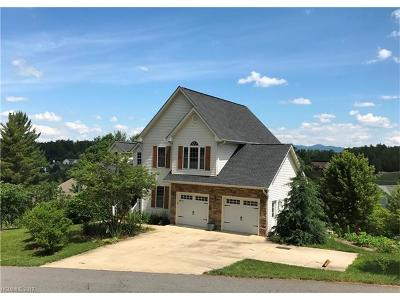 Weaverville Single Family Home For Sale: 164 Double Brook Drive