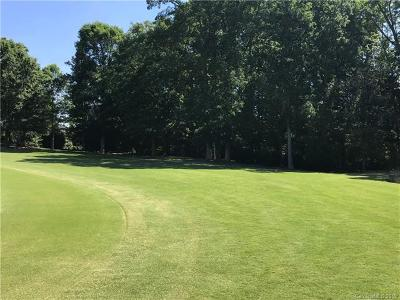 Waxhaw Residential Lots & Land For Sale: 600 Medallion Drive #1