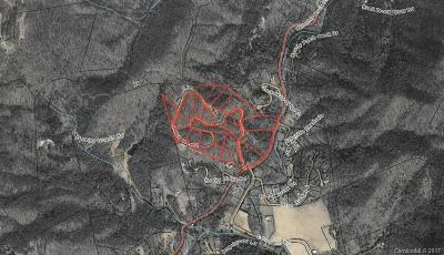 Hendersonville Residential Lots & Land For Sale: Chimney Rock Road