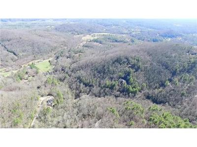 Asheville Residential Lots & Land For Sale: 9999 Skip Stone Road