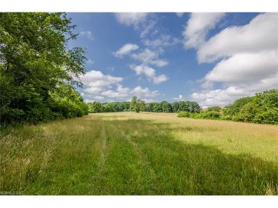 Mills River Residential Lots & Land For Sale: Banner Farm Road