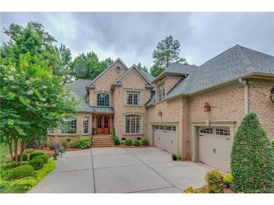 Lake Wylie Single Family Home For Sale: 1703 Mineral Springs Road #204