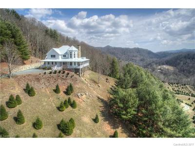 Watauga County Single Family Home For Sale: 4221 Bethel Road
