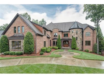 Indian Trail, Marvin, Matthews, Waxhaw, Weddington Single Family Home For Sale: 1910 Funny Cide Drive