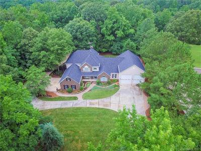 Fort Mill Single Family Home For Sale: 3285 Pleasant Road