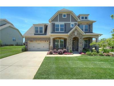 Mint Hill Single Family Home For Sale: 12753 Telfair Meadow Drive