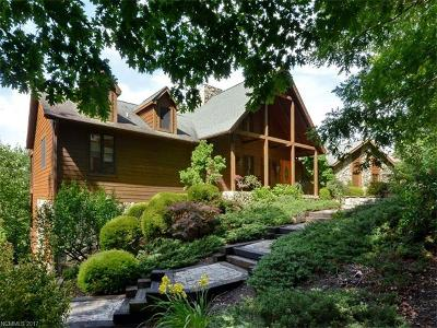 Asheville Single Family Home For Sale: 132 Buffalo Trail