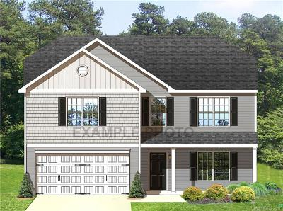 Bessemer City Single Family Home Under Contract-Show: 5025 Ashley Place Drive #41