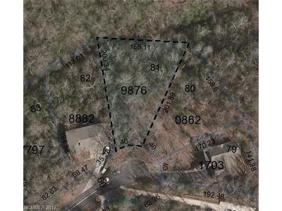 Transylvania County Residential Lots & Land For Sale: Unit 12 Lot 81 Tsataga Court