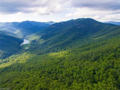 Buncombe County, Haywood County, Henderson County, Madison County Residential Lots & Land For Sale: 162 AC Bee Tree Road