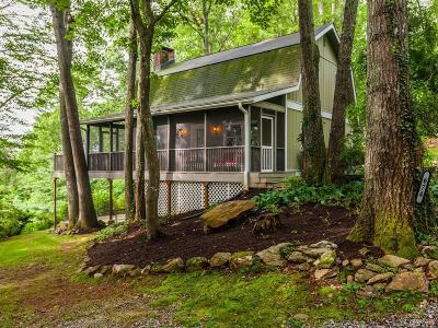 Mills River Single Family Home For Sale: 674 N Reece Drive
