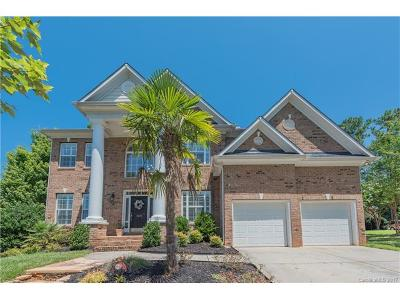 Tega Cay Single Family Home For Sale: 1621 Scotch Pine Lane