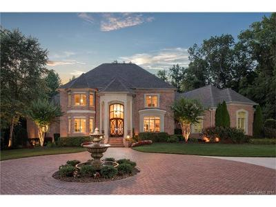 Single Family Home For Sale: 17415 Cabarrus Road