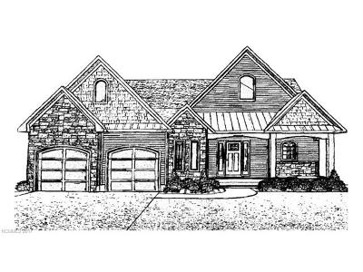 Hendersonville Single Family Home For Sale: Dawn Mist Court #1603