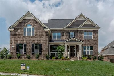 Fort Mill Single Family Home For Sale: 399 Hampton Trail Drive #HAE0091