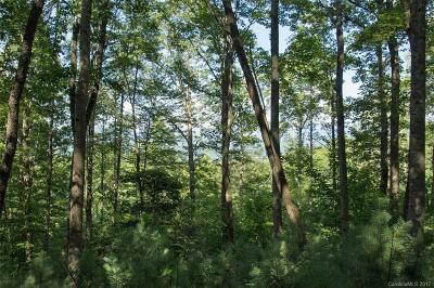 Hendersonville Residential Lots & Land For Sale: 233 Mountain Sunset Trail #27