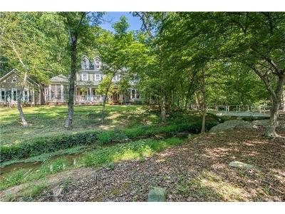 Mint Hill Single Family Home For Sale: 10600 Hanging Moss Trail