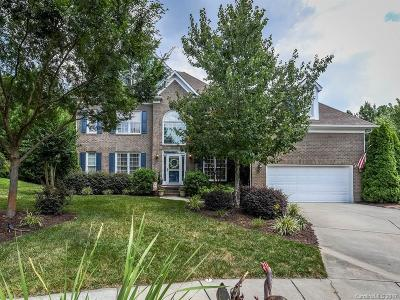 Tega Cay Single Family Home Under Contract-Show: 3113 Quiet Cove
