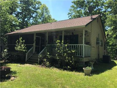 Lake Lure, Chimney Rock, Bat Cave, Black Mountain, Saluda, Mill Spring, Columbus, Tryon, Rutherfordton, Union Mills Single Family Home For Sale: 111 Hawks Court