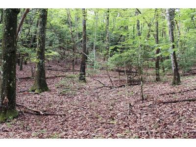 Brevard Residential Lots & Land For Sale: 5 Walnut Ridge Road #5