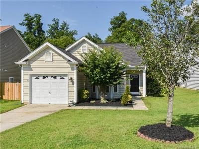 Fort Mill Single Family Home For Sale: 3317 Adair Marble Street