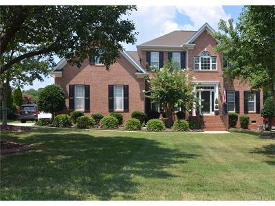 Mint Hill Single Family Home For Sale: 10623 Persimmon Creek Drive