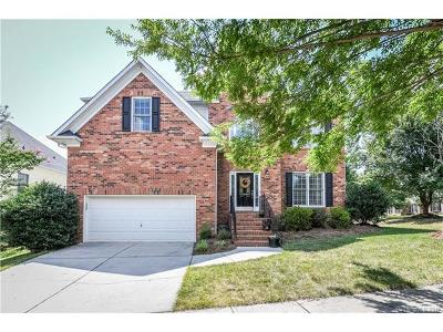 Tega Cay Single Family Home Under Contract-Show: 3085 River Bend Drive
