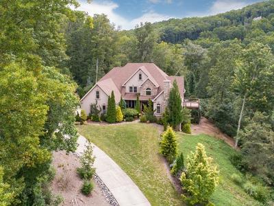 Asheville Single Family Home For Sale: 39 Crestridge Drive