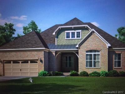 Charlotte Single Family Home For Sale: 11313 Blarney Ridge Drive