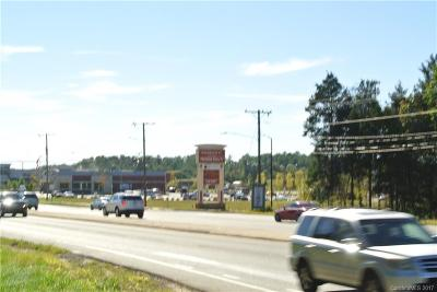 Single Family Home For Sale: 9101 Steele Creek Road