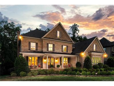 Fort Mill Single Family Home For Sale: 623 Bannerman Lane