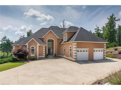 Weaverville Single Family Home For Sale: 21 Nader Avenue