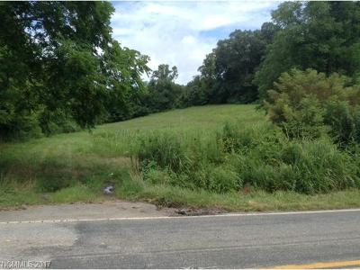 Buncombe County Residential Lots & Land For Sale: W Sardis Road