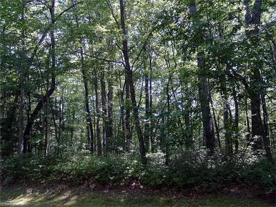 Transylvania County Residential Lots & Land For Sale: Cherokee Circle #13/8