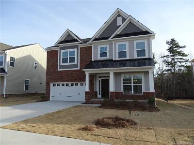 Tega Cay Single Family Home For Sale: 5050 Waterloo Drive #49