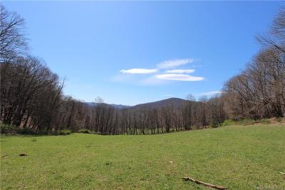 Burke County, Caldwell County, Watauga County, Avery County, Ashe County Residential Lots & Land For Sale: Howards Creek Road