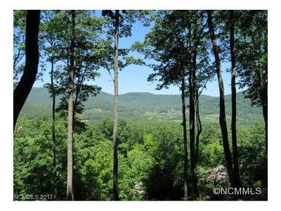 Arden Single Family Home For Sale: 303 Secluded Hills Lane #Lot 63