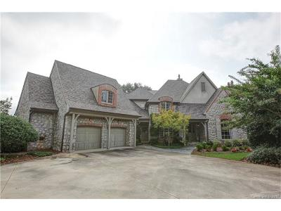 Belmont Single Family Home For Sale: 4050 South Cove Lane #L5