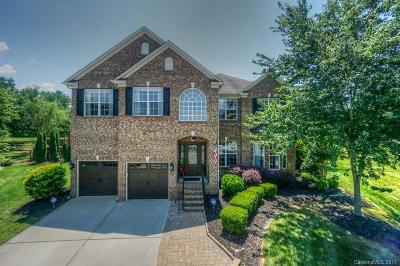 Huntersville Single Family Home For Sale: 14134 Hiawatha Court