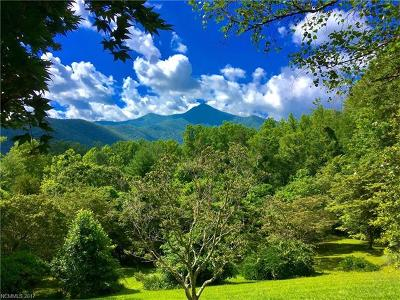 Residential Lots & Land For Sale: 70 Pisgah View Ranch Road