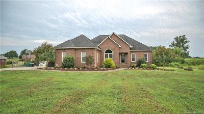 Stanly County Single Family Home For Sale: 29030 Jordans Pond Drive