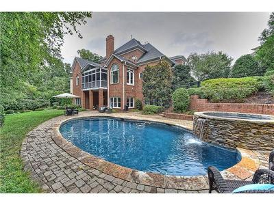 Ballantyne, Ballantyne Country Club, Ballantyne Meadows Single Family Home For Sale: 11104 McClure Manor Drive