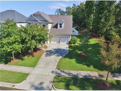 Davidson Single Family Home For Sale: 13536 Helen Benson Boulevard