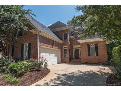 Cornelius Single Family Home For Sale: 17422 Summer Place Drive